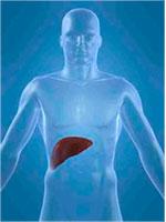 analisis detoxificacion hepatica