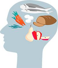 nutricion cerebral