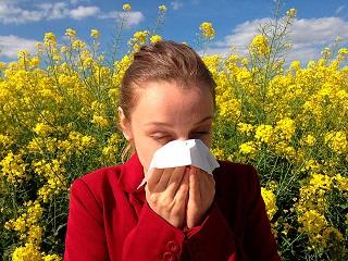 prueba alergia test isac